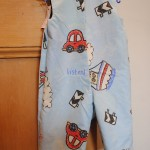 Reversible Dungarees